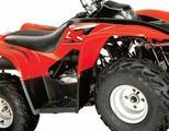 Квадроцикл ATV wels LX70